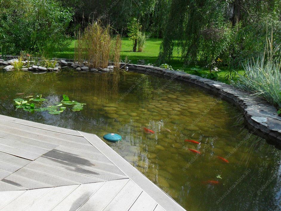 проектирование прудов и водоемов